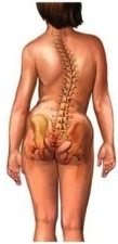 Oefentherapie Motus | Scoliose